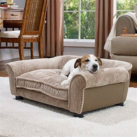 dog settee sofa best sofa for dogs excellent 25 best dog couches sofas