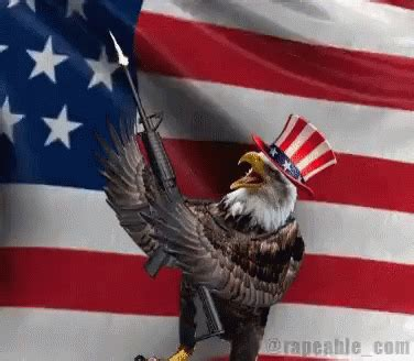 bald eagle flag gif  flag collections