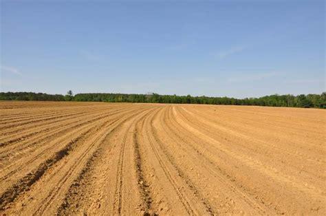 imagenes 3d en el suelo 191 cu 225 les son los tipos de suelos 187 respuestas tips