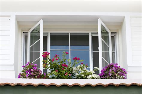 signs your home needs replacement windows scheel window
