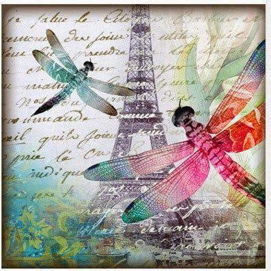 imagenes vintage libelulas m 225 s de 25 ideas incre 237 bles sobre caja de insectos en