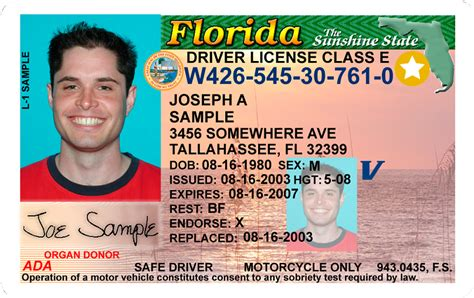 florida drivers license template official website florida department of highway safety and
