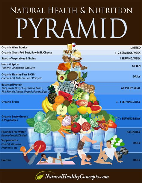 a fresh wellness mindset personalize your food find your about gluten books healthy food pyramid infographic
