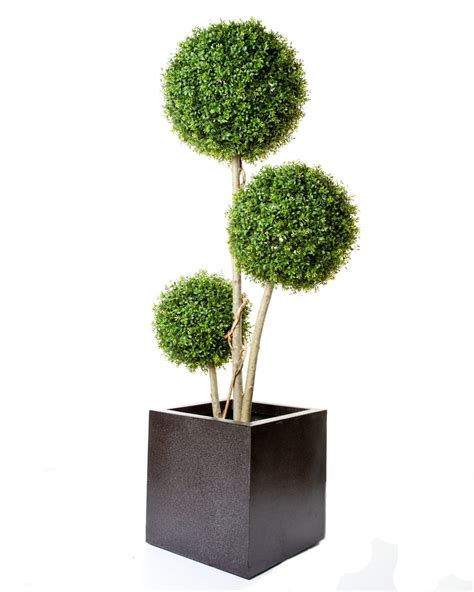 artificial topiary uk artificial boxwood stemmed tree just artificial