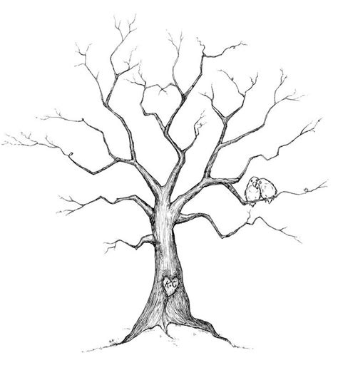 draw a family tree template family tree drawing ideas trees tree