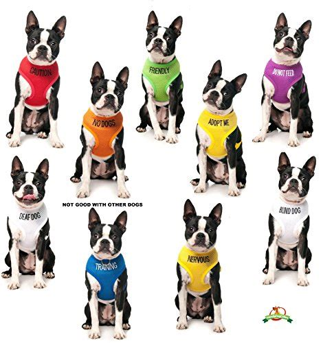 Ae Pulls Dogs Show For Foreseeable Future by Color Coded Non Pull Harness Prevents Accidents By