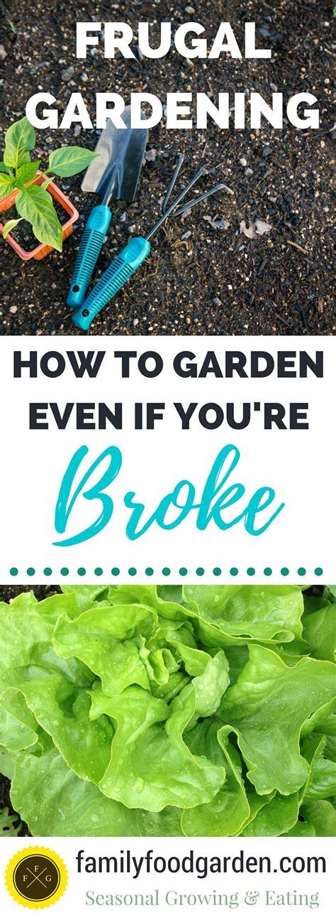 Frugal Gardening by Frugal Gardening Best Ways To Save Money Family Food Garden