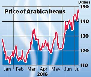 The Cost Of Beans by Prepare For The 163 3 Cup Of Coffee As Price Of Arabica Beans