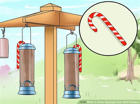 homemade squirrel deters for bird feeders homemade ftempo