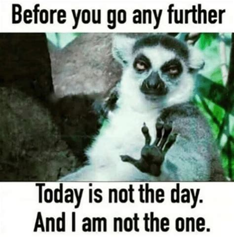 Today S Funny Memes - before you go any further today is not the day and i am