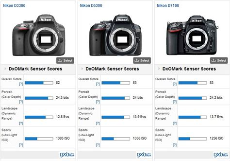 Antigores Nikon D7100 High Quality nikon d3300 vs nikon d5300 vs nikon d7100 similar sensor performance dxomark