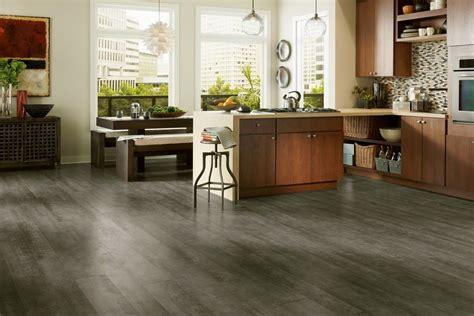 4 feline friendly flooring options now say it 5 times