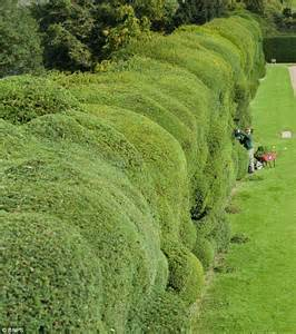 Country House Plans Online 4 Gardeners To Spend Three Months Trimming Montacute House