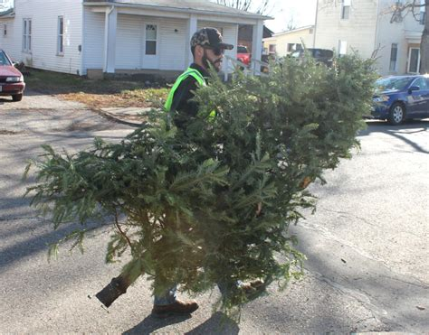 christmas tree pick up christmas tree pick up in logan news logandaily com