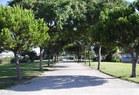 imagenes zonas verdes zonas verdes