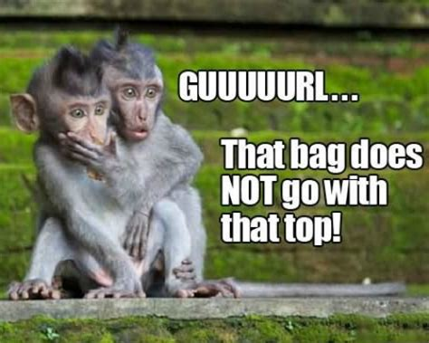 Baby Monkey Meme - 10 funny monkey memes for your face