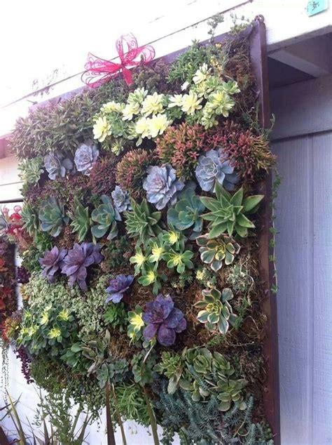 Succulent Wall Gardening Pinterest Wall Succulent Garden