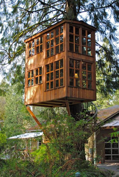Treehouse House | wallmarks tree house hotels
