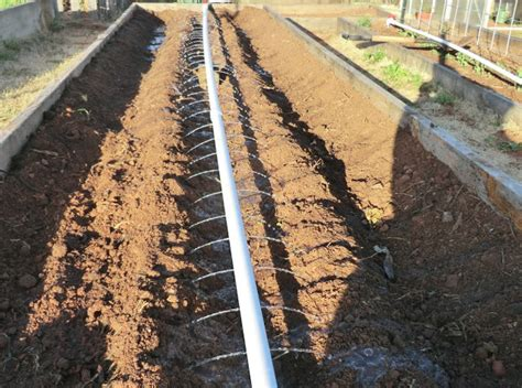 Patio Drip Irrigation System by Junk The Water Hose For A Simple 35 Diy Rainwater