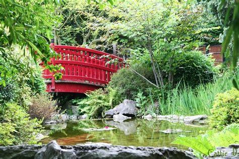 imagenes de jardines japon jardin zen plant nature photos cathie d