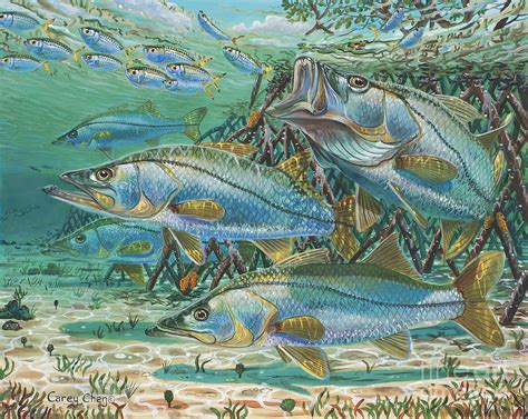 Shower Curtain 36 X 72 Snook Attack In0014 Painting By Carey Chen