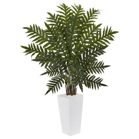 nearly indoor evergreen artificial plant in white