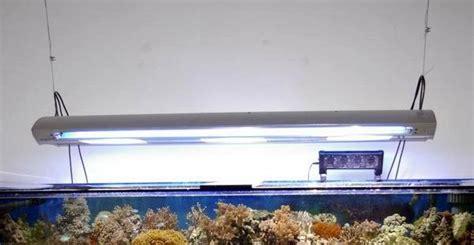 meerwasseraquarium beleuchtung aquarium beleuchtung meerwasser hqi gro 223 e h 228 ngele