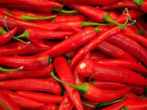 Cabe Besar the chilli challenge emerge australia