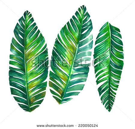 banana palm wallpaper palm leaves google search embroidery pinterest