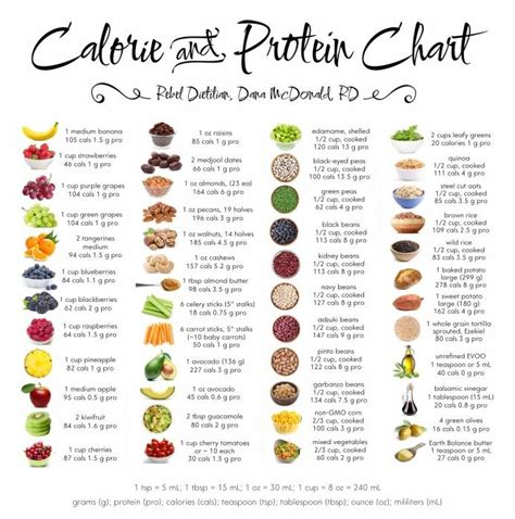 food the best nutrition for your four legged friend books best 25 calorie chart ideas on