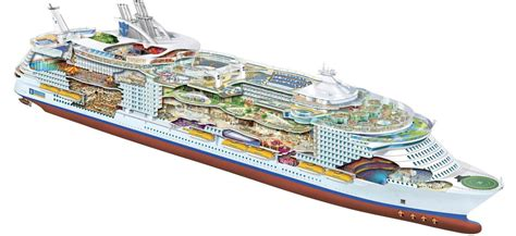 oasis of the seas floor plan oasis of the seas oasis class ships royal caribbean uk