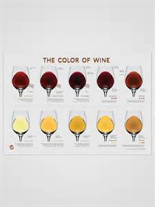 color of wine varietats the color of wine by wine folly