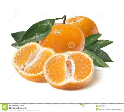 design elements mandarin fl whole mandarin and one cut half on white stock photo