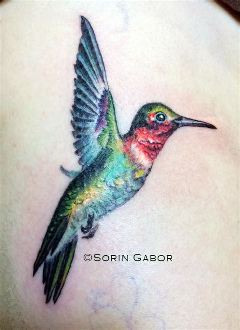 realistic hummingbird tattoos realistic hummingbird drawings