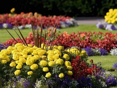 22 Floral Installations And Landscaping Ideas With Mums Fall Flower Garden
