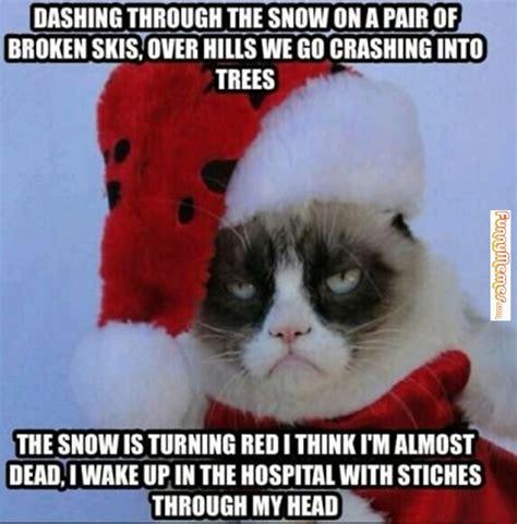 I Hate Christmas Meme - cat memes i hate christmas cat memes pinterest memes