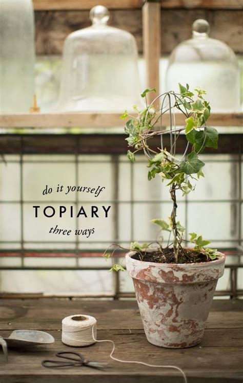 diy pronunciation i ve had a thing for topiaries ever since i could