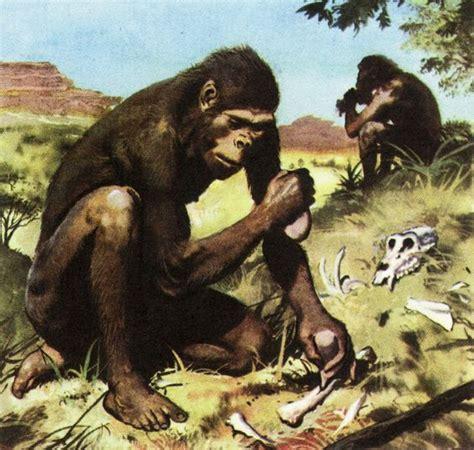 africanus el hijo del australopithecus africanus by zdenek burian 9 australopithecus africanus
