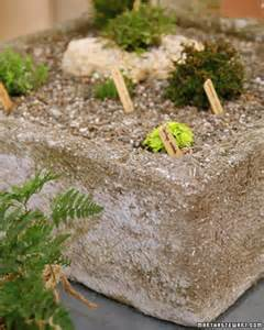 Lightweight Concrete Planters by Lightweight Concrete Containers Martha Stewart