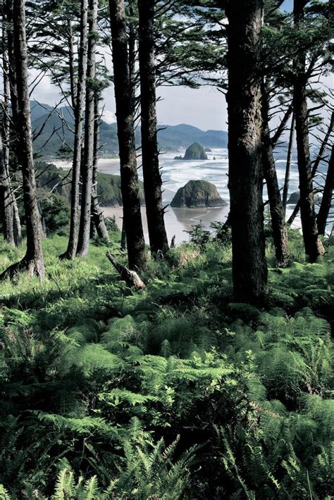 shelters in oregon 17 best images about oregon photos shelter bay on crater lake lakes and