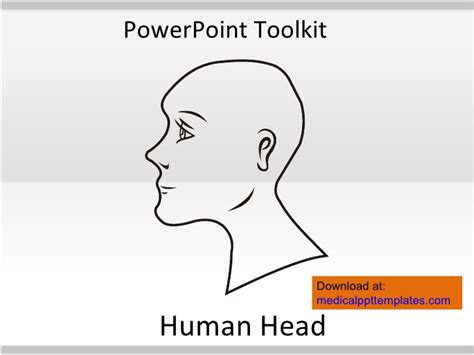 human powerpoint template human anatomy toolkit human anatomy powerpoint template