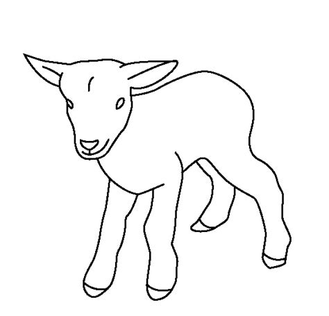 boer goat coloring page goat coloring pages for toddelers pygmy goat coloring page