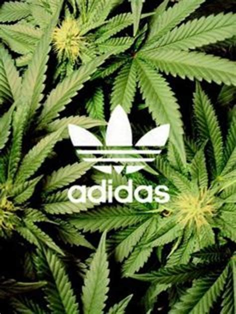 adidas wallpaper weed weed adidas and style on pinterest