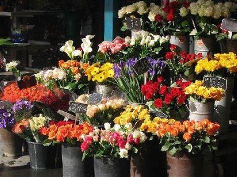 mercato di fiori il mercato dei fiori paperblog