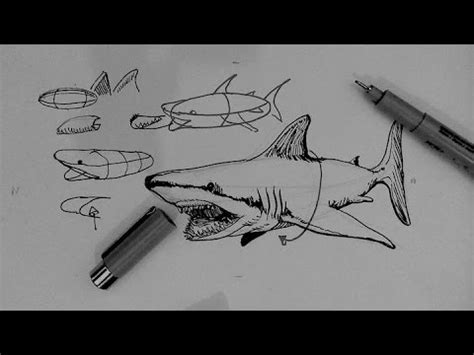 tattoo removal pen shark tank pen and ink drawing tutorials how to draw a shark youtube