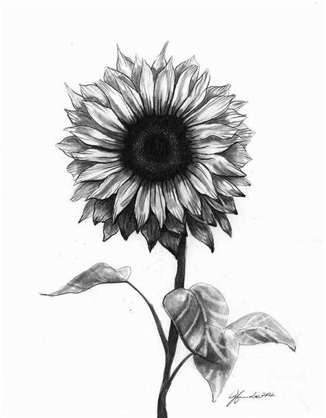 52 Idee Tattoo Girasole Piccolo E Immagini Tatuaggi E Black And White Sunflower Shoulder