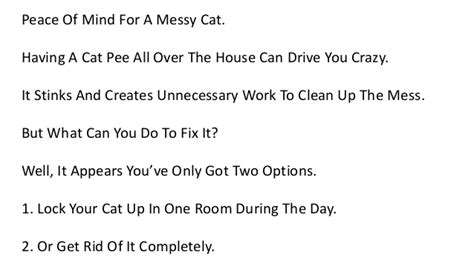 how to get cat out of a rug what gets cat urine smell out of carpet floor matttroy