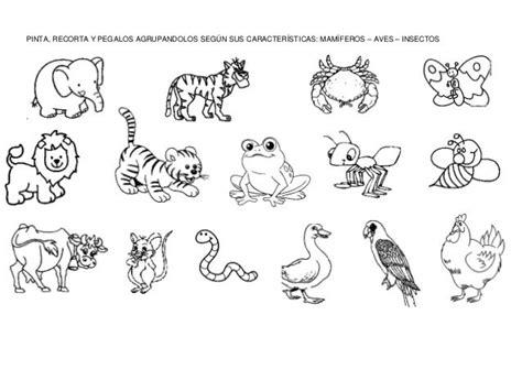 cadenas alimenticias fáciles para dibujar lamina animales fichas pinterest