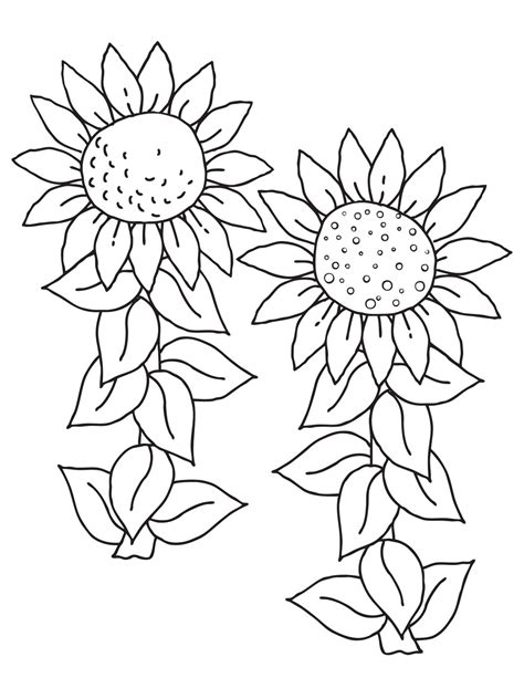 Free Printable Sunflower Coloring Pages For Kids Free Coloring Pictures Printable