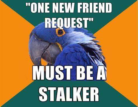 Paranoid Parrot Meme - paranoid parrot paranoid parrot pinterest